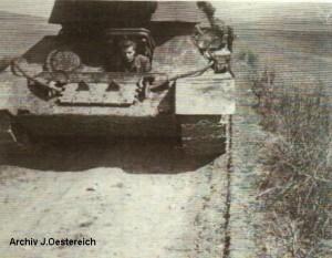 streich10